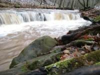 KITCHEN CREEK FOREST - 422 ACRES +/-