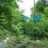 Feedtrough Run 63 Acres (11)