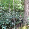 Feedtrough Run 63 Acres (6)