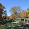 Mitchell Ridge Forest Tour 23
