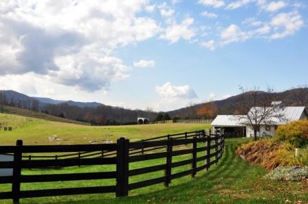 Chapel Ridge Farm Tour 09