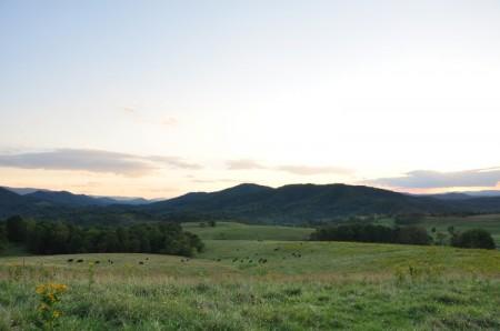 Chapel Ridge Farm Tour 11