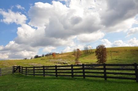 Chapel Ridge Farm Tour 14
