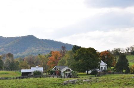 Chapel Ridge Farm Tour 15