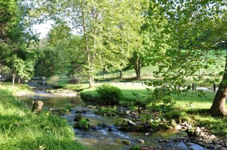 Chapel Ridge Farm Tour 19