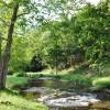 Chapel Ridge Farm Tour 20