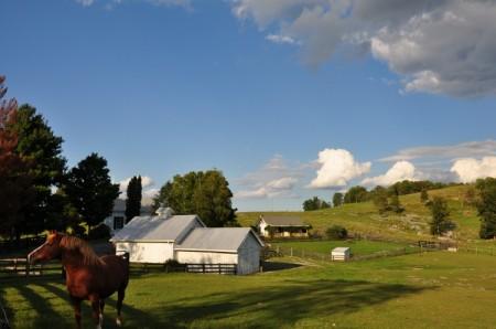 Chapel Ridge Farm Tour 30