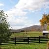 Chapel Ridge Farm Tour 42