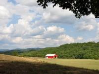 TOTTEN FARM ON RIVER ROAD - 95 ACRES +/-