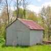 Birchfield Spring 03