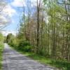 Birchfield Spring 07