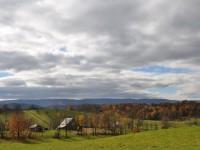 WYNDRIDGE HISTORIC FARM<br />296 +/- ACRES
