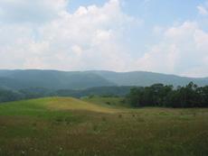 Smith Farm ONE