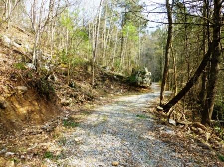 stoney creek canyon road