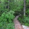Blackberry Mountain Tour 04