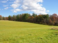 MOUNTAINTOP MEADOW - COUNTRYSIDE HOMESITES