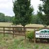 Mountaintop Meadow Tour 02