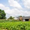 Grandview Farm Tour 38