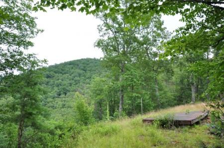 Grimmett Forest Tour 04