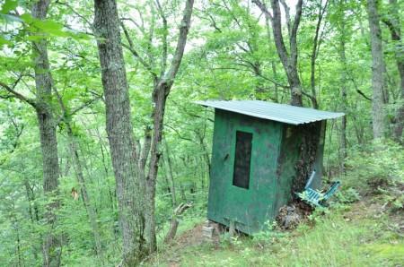 Grimmett Forest Tour 12