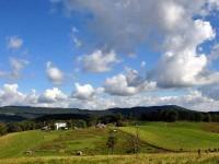 FORREN FARM AT FORT SPRING - 285 +/- ACRES