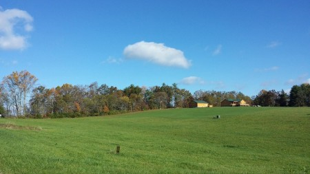 mountaintop meadow fall morning