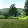 Stony Creek31