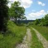 Stony Creek34