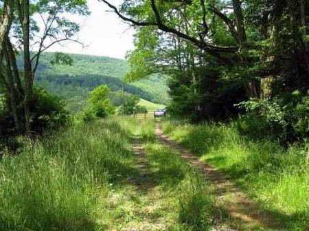 Stony Creek35