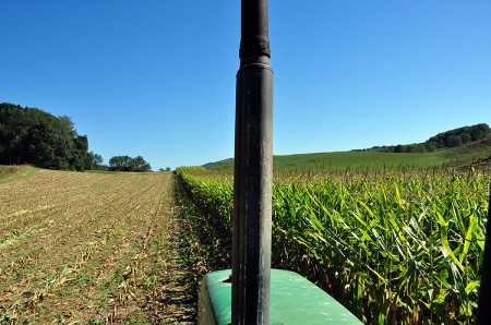 Toler Farm12