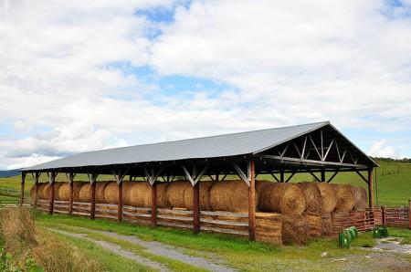 Toler Farm13