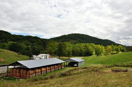 Toler Farm14