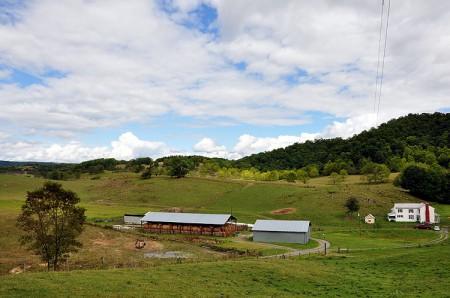 Toler Farm16
