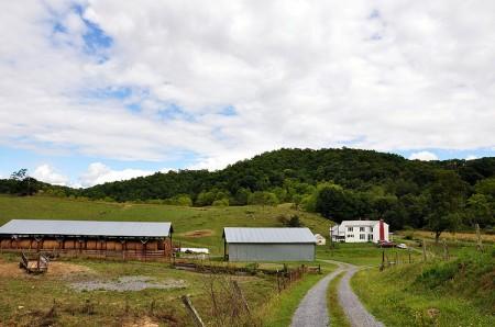 Toler Farm35