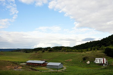 Toler Farm38