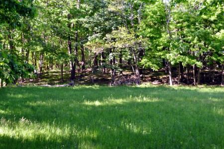 29-Bonniebrook Update -028