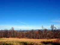 ROUNDBOTTOM FARM - 280 +/- ACRES