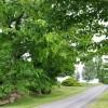 02-Wendover Hills Updated Tour-001