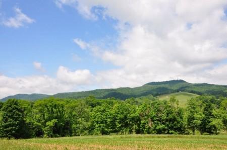 47-Wendover Hills Updated Tour-046