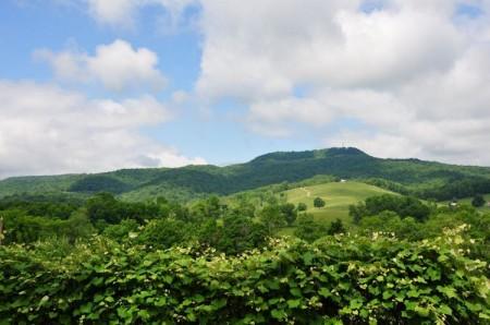 48-Wendover Hills Updated Tour-047