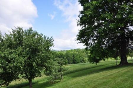 58-Wendover Hills Updated Tour-057