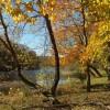 River Island - Ream 012