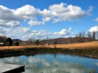 SKY MEADOWS FARM<br />58 +/- ACRES