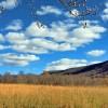 Sky Meadow Tour 002