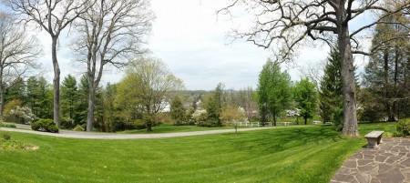daywood spring