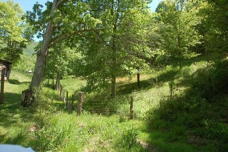 Green Valley16