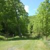 Green Valley2