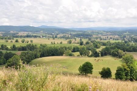 06 Highland Green Farm Tour