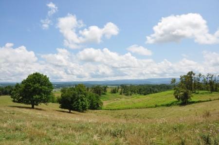 10 Highland Green Farm Tour