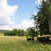 13 Highland Green Farm Tour